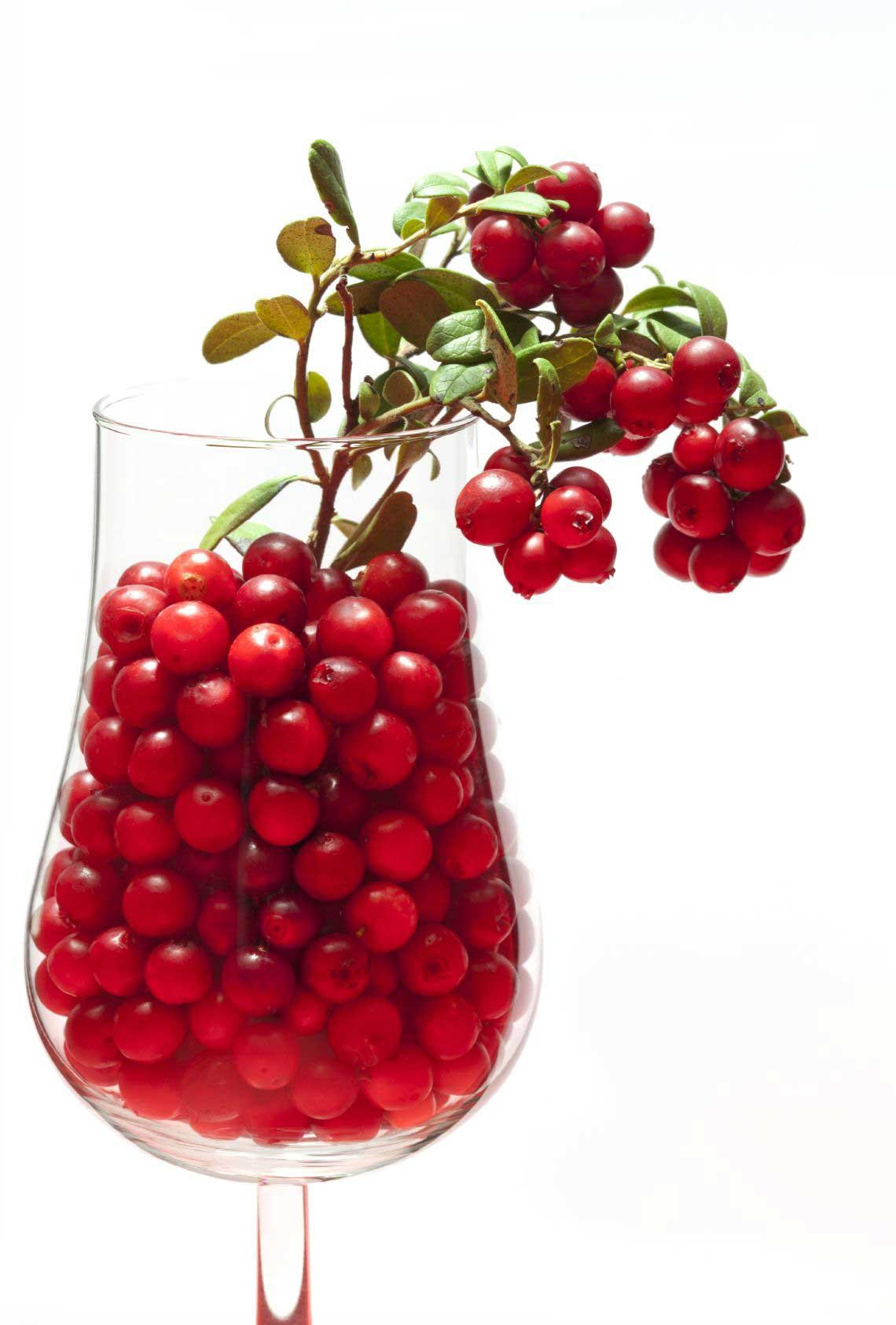 Lingon i glas - lingonjuice har antibakteriell och antiinflammatorisk effekt och kan hjälpa mot urinvägsproblem.